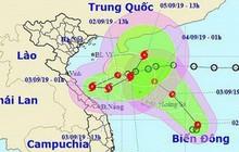 Video: 3 cơn bão sẽ tấn công đất liền vào cuối năm 2019