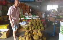 Nông sản đi Trung Quốc: Từ vườn đến biên giới - Đường dài khổ ải