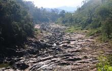 Những 'dòng sông chết' dưới chân đập thủy điện Đắk Mi 4