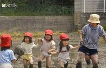 Phương pháp giáo dục mẫu giáo của Nhật Bản khiến nhiều cha mẹ Việt phải ngả mũ thán phục