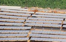 Giá điện mặt trời sẽ theo cơ chế đấu thầu