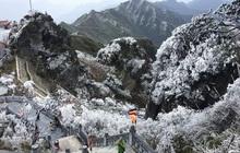 Fansipan hóa núi tuyết, cây cỏ đông cứng trong âm 8 độ