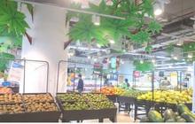 Nhiều trái cây Việt giảm giá do bị Trung Quốc siết chặt