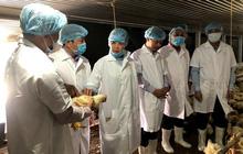 Thị trường thịt tết: Tăng gia cầm bù heo dịch