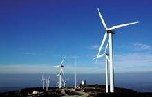 Giải quyết nỗi lo thiếu điện nhờ điện gió