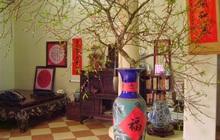 Cách bày trí phòng khách theo phong thủy để rước lộc vào nhà dịp Tết Nguyên đán