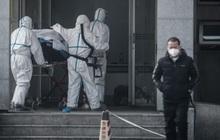 Nỗi lo cúm Vũ Hán lây ra toàn cầu lớn hơn khi Tết Nguyên đán dần đến