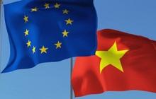 Các nội dung chính vừa được Nghị viện châu Âu thông qua của EVFTA