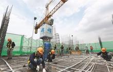 Xây dựng Hòa Bình (HBC) lãi quý 4 hơn 208 tỷ đồng, tăng trưởng 60%