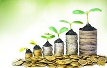 Phê duyệt Chiến lược tài chính toàn diện quốc gia
