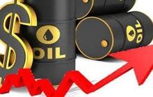 Thị trường ngày 29/01: Dầu đảo chiều tăng do chứng khoán phục hồi, vàng quay đầu giảm