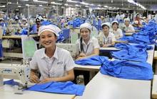 SSI Research: Không có nhiều công ty dệt may trong nước có khả năng hưởng lợi đầy đủ từ EVFTA