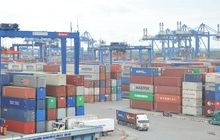 Nhiều chuyến hàng 'tỷ đô' đầu năm, kỳ vọng xuất khẩu vượt 300 tỷ USD
