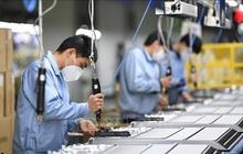 IMF cảnh báo tăng trưởng kinh tế toàn cầu giảm vì COVID-19