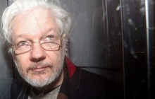 Thực hư chuyện Tổng thống Trump hứa ân xá nhà sáng lập WikiLeaks