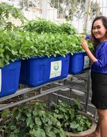 Giám đốc ngân hàng bỏ lương trăm triệu, trồng rau thu 2 tỷ/tháng