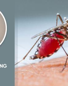"""Chuyên gia cảnh báo: Mắc sốt xuất huyết, tuyệt đối không làm 1 việc kẻo """"bệnh nặng thêm đấy""""!"""