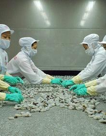 """""""Khoảng trống"""" lớn cho hàng hóa Việt tại thị trường Australia"""