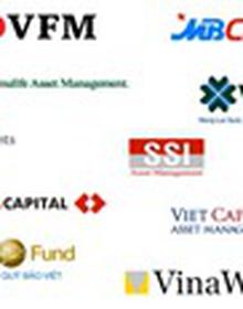 """9/17 quỹ nội """"chiến thắng"""" chỉ số VN-Index trong nửa đầu năm 2017"""