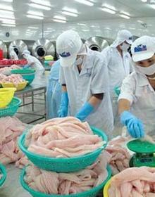 Không chỉ xuất khẩu mà nhập khẩu thủy sản vào Việt Nam cũng tăng mạnh