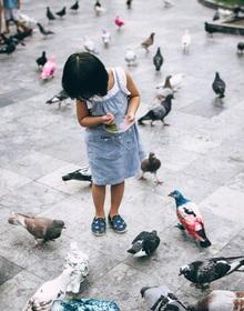 """Những người Sài Gòn """"khùng"""" nuôi chim trời thú hoang"""