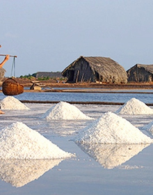 Kiểm soát chặt chất lượng muối nhập khẩu
