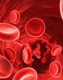 Những điều cần biết về nhiễm độc sắt để bảo vệ sức khỏe bản thân