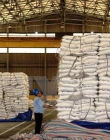 Hàng trăm container điều xuất, nhập khẩu phải lưu bãi do vướng thủ tục