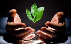 Tin nóng cho cộng đồng startup: Quỹ đầu tư khởi nghiệp sáng tạo đã có khung pháp lý