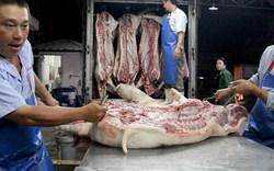 Khủng hoảng thịt heo có thể sẽ trở lại