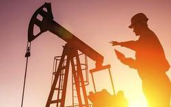 Giá dầu thô giảm do hàng tồn kho bất ngờ tăng mạnh