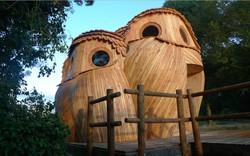 Hút mắt ngắm ngôi nhà gỗ hình 3 con cú mèo
