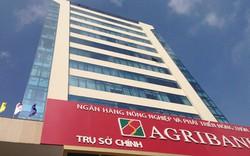 Agribank thoái vốn tại hàng loạt công ty