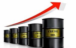 Tăng 38% kể từ giữa tháng 6, dầu thô đang trở thành 1 trong những tài sản đầu tư hấp dẫn nhất
