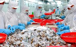 Xuất khẩu tôm sang thị trường Hàn Quốc nhiều triển vọng