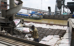 Xi măng: Tiêu thụ nội địa giảm, xuất khẩu tăng trở lại