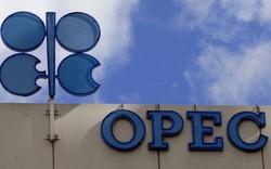 Thị trường ngày 08/12: Giá dầu đảo chiều tăng mạnh sau khi OPEC nhất trí cắt giảm sản lượng