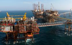 Giá dầu chịu áp lực từ sản lượng của Mỹ