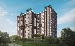 Nhiều sàn bất động sản tại Bình Định giao dịch mua bán căn hộ nhà ở xã hội không đúng quy định