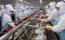 Triển vọng lạc quan của thuỷ sản Việt Nam tại ASEAN