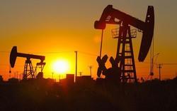 Triển vọng giá dầu tuần 13 – 17/8: Lo ngại yếu tố 'gấu' khi giá dầu đã giảm nhiều tuần liên tiếp