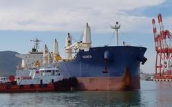 Bộ GTVT nói gì về kết luận thanh tra cổ phần hóa cảng Quy Nhơn?