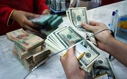 ADB: Tỷ giá Việt Nam có khả năng phải đối diện với áp lực kép