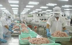 Cá tra Việt được dự báo lạc quan ở thị trường EU trong năm 2019