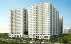 TPHCM phạt gần 300 triệu đồng chủ đầu tư dự án Topaz bàn giao nhà khi chưa nghiệm thu công trình