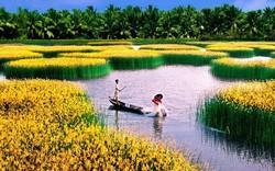 Ngành nông nghiệp xuất khẩu đạt gần 20 tỷ USD