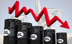 Thị trường ngày 23/1: Dầu mất giá hơn 2%, kim loại giảm sâu, riêng vàng vững