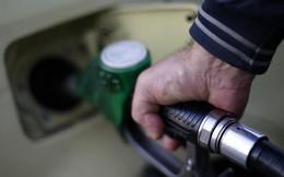 """Giá dầu """"bốc hơi"""" 5% sau khi IMF hạ dự báo tăng trưởng kinh tế toàn cầu"""