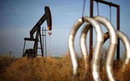 Giá dầu thế giới chạm đáy 11 năm