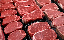 TPP có ý nghĩa quan trọng với ngành công nghiệp bò thịt Bắc Mỹ